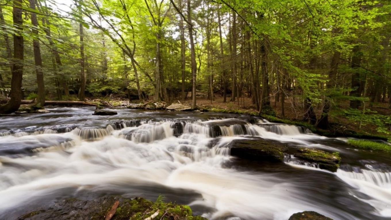 Dwarfskill Creek