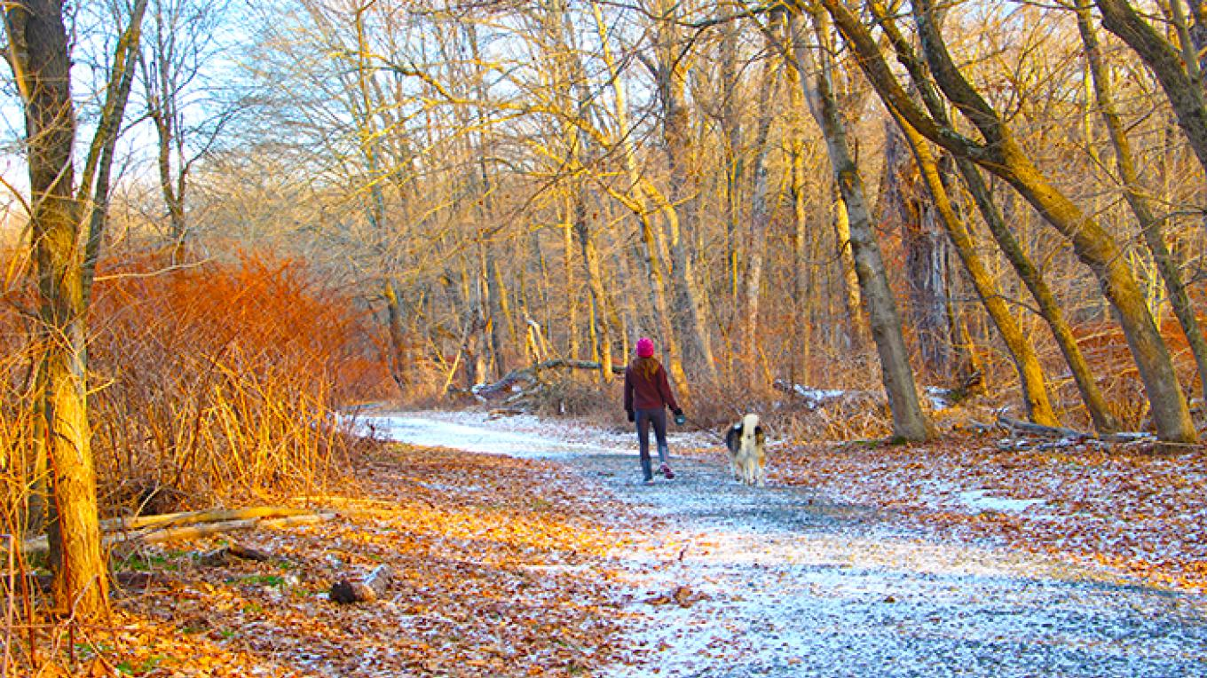 A winter day hiking the McDade Trail at Egypt Mills. As with most trails in the park, pets are permitted on a leash 6-feet or less. – National Park Service