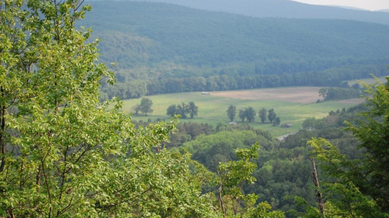 Scenic Overlook on the Tumbling Waters Hiking Trail – PEEC Staff Photo