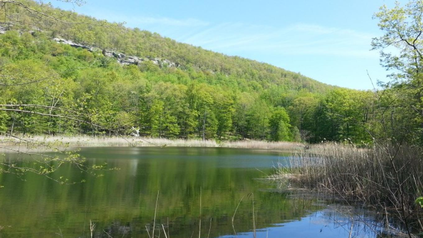 400 acres of natural woodlands, including our secluded Wildlife Lake. – Camp Taylor Campground