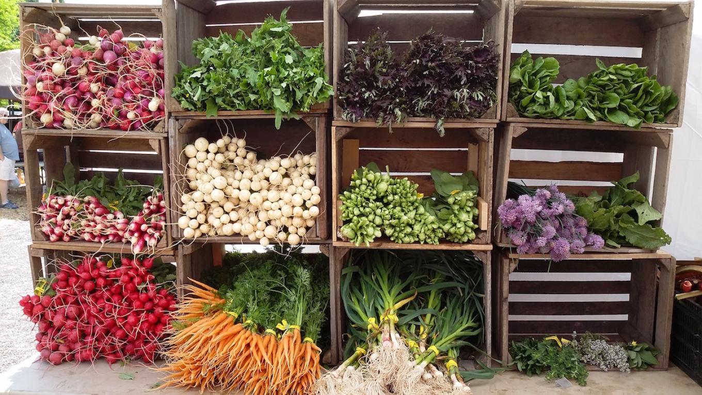 Farmers market bounty – Herb Clark