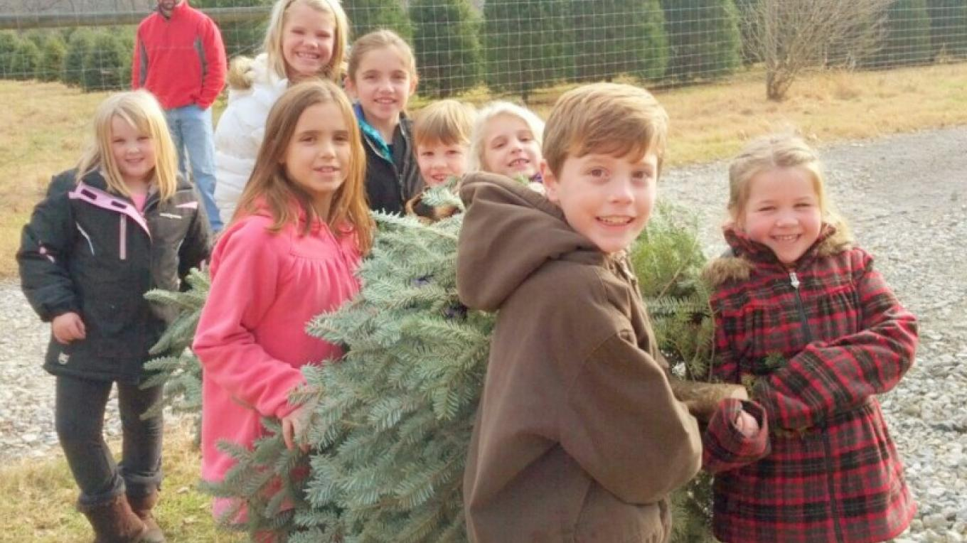 Eight kids carry out a Fraser fir – Tim Dunne