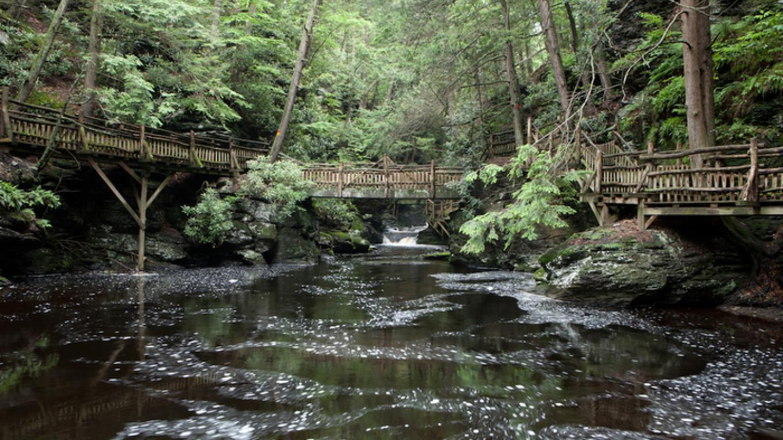 Bushkill Falls, Bushkill, PA. – David W. Coulter