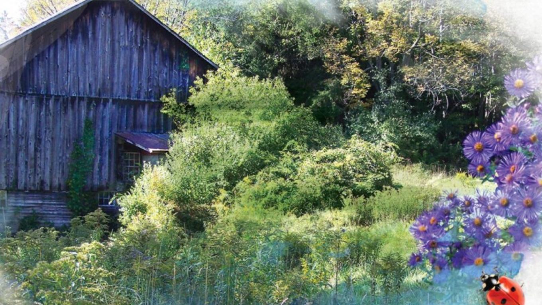 Delaware Highlands Conservancy