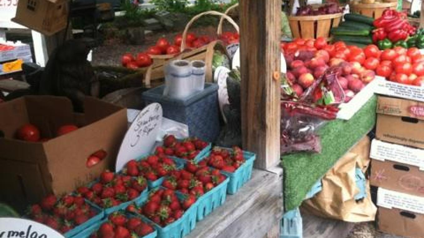 Locally grown produce in season – Susan Cooper