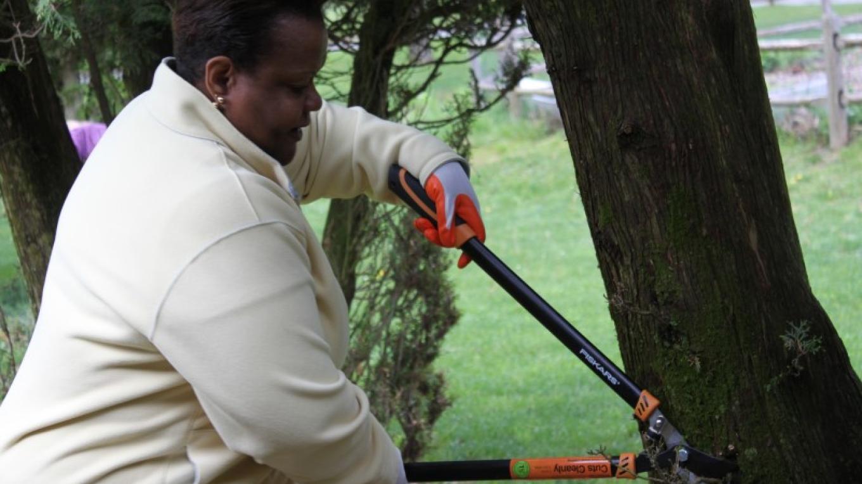 Gardening / Tree Trimming – PEEC Staff Photo