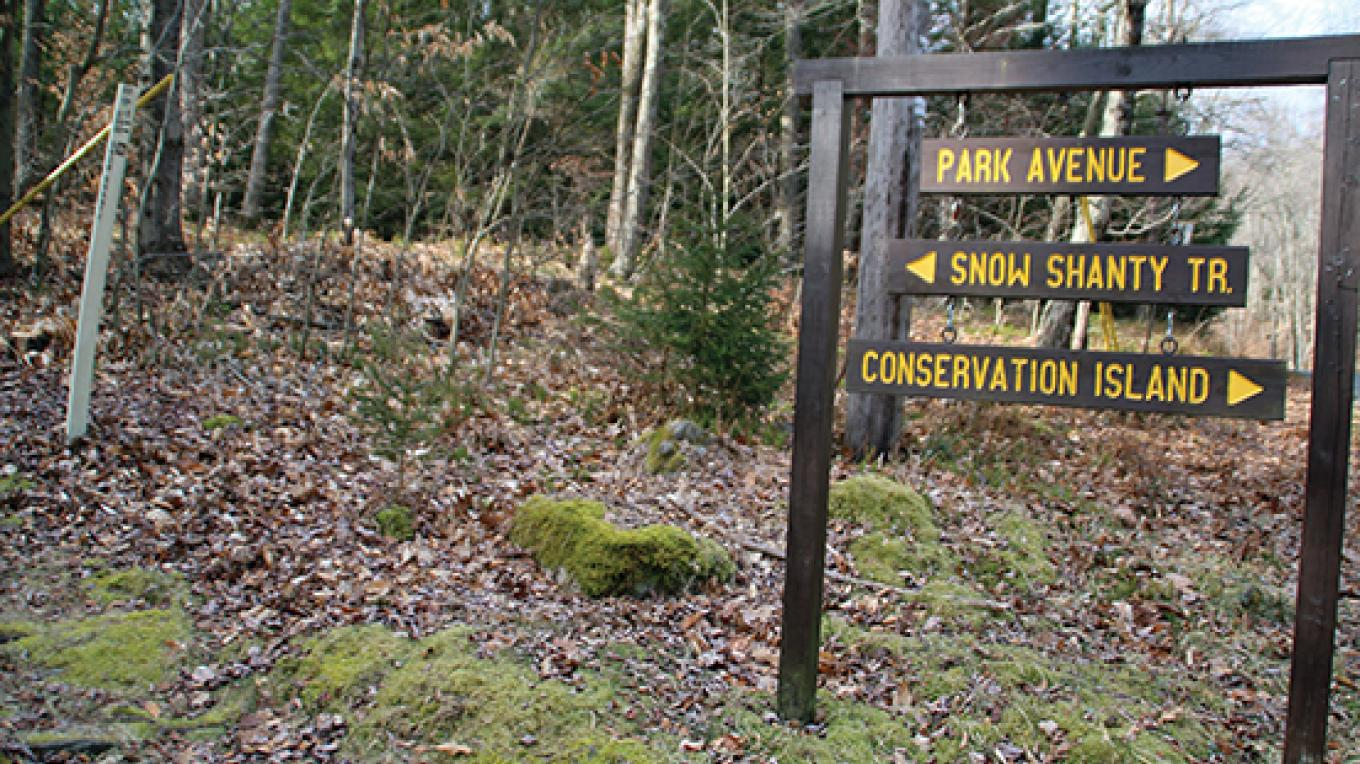 Look for this sign to find the trailhead off Route 390. – Nancy J. Hopping