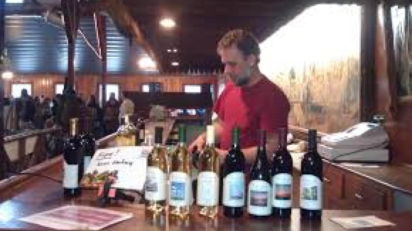 Anthony, our wine maker at Sustainable Andover Winter Market. – Gene Ventimiglia