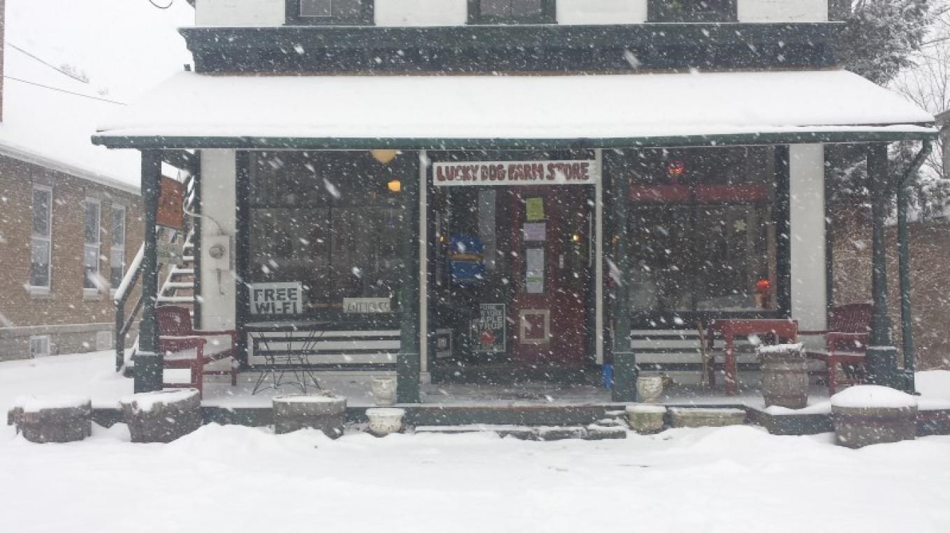 Lucky Dog Farm Store store front. Open year-round! – Amber Gray