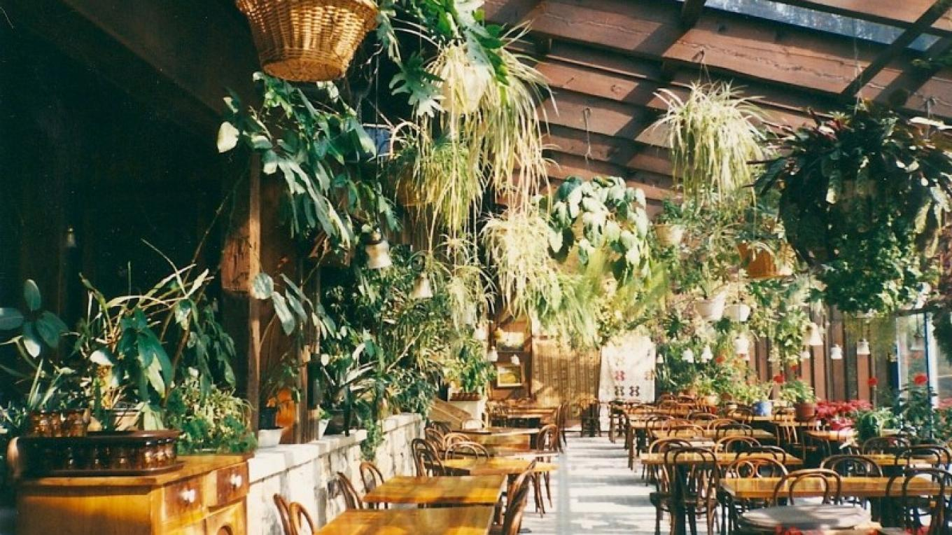 Greenhouse Dining Room 1960s – Jim Heigis