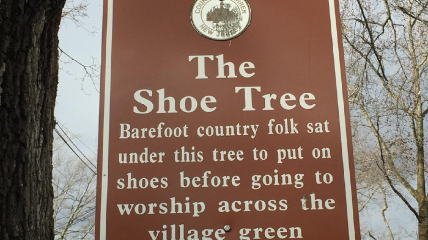 On the corner of Third Street and Oxford Street is the Shoe Tree, a white oak that is probably over three hundred years old, older than our country. – Patricia Butler