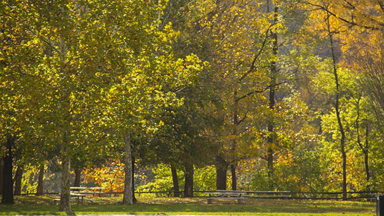 A crisp autumn day at the Smithfield Beach picnic area. – National Park Service