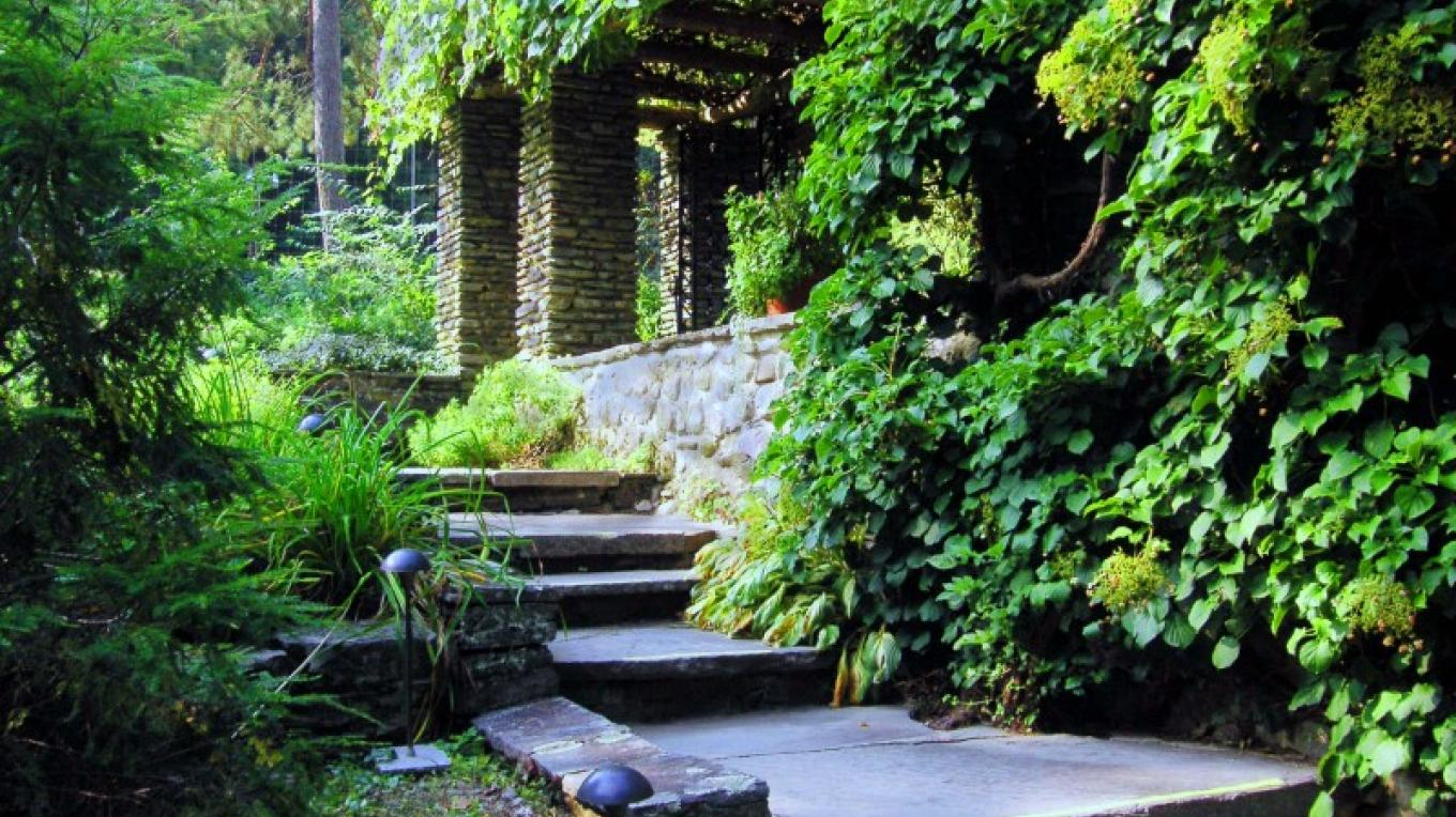 Lush gardens with perennial and annual plants and hundreds of trees surround the mansion. – Norma Bernstock