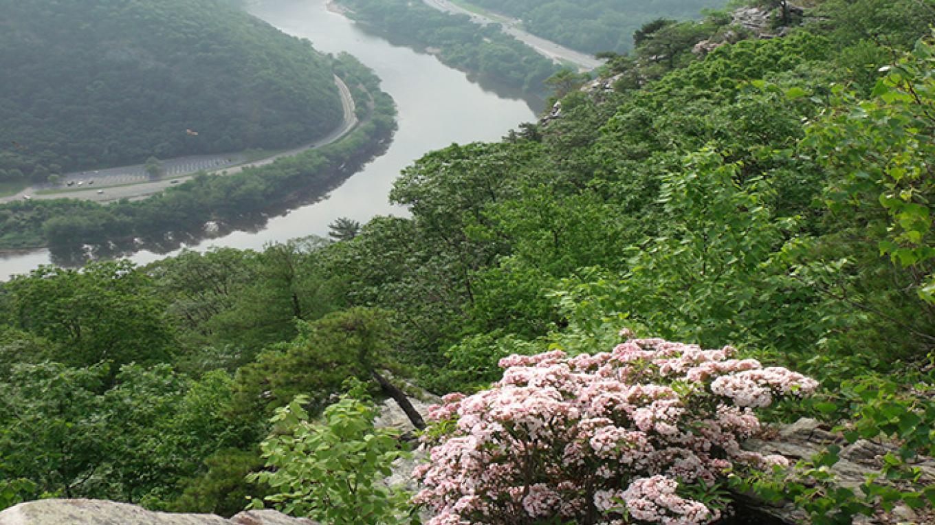 Spectacular views of the Delaware River from the top of nearby Mt. Tammany. This challenging hike is just a short walk from the Kittatinny Point Visitor Center. The trailhead is located in the Dunnfield Creek parking lot. – National Park Service