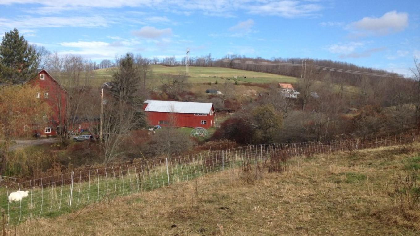 A view of the farmstead. – Daniel Marsiglio
