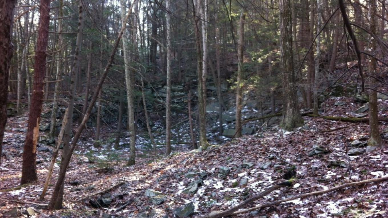 Abandoned bluestone quarry. – Garrett Beers