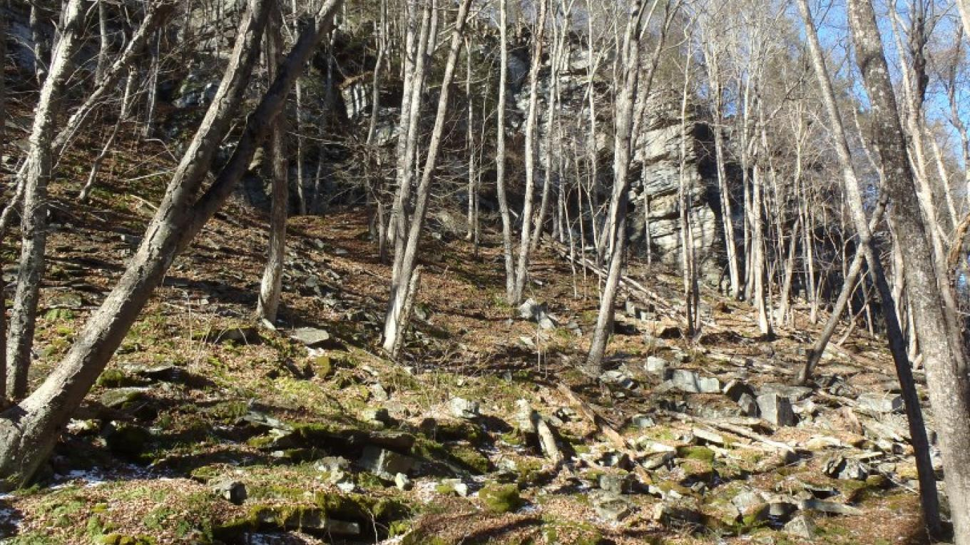 Bluestone outcropping. – Garrett Beers
