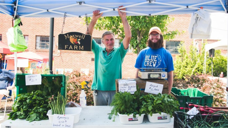Maxwell's Farm has seasonal fresh-picked produce – Katie Mills