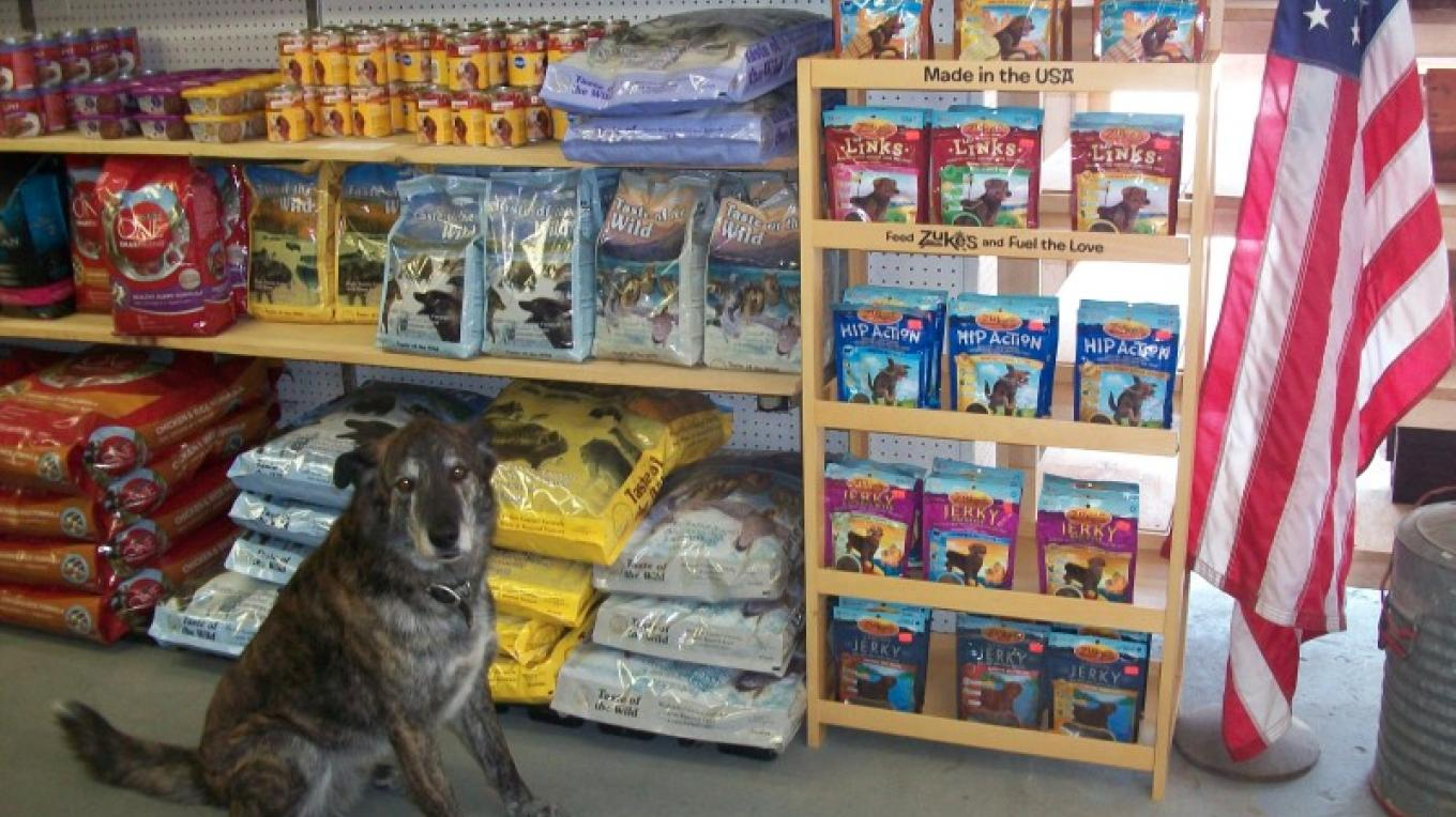 Troy with his favourite treats! – Aline Haddad & Jesse Poliskiewicz