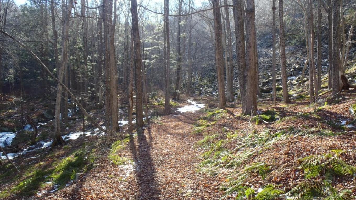 Old bluestone road which now serves as a hiking trail. – Garrett Beers