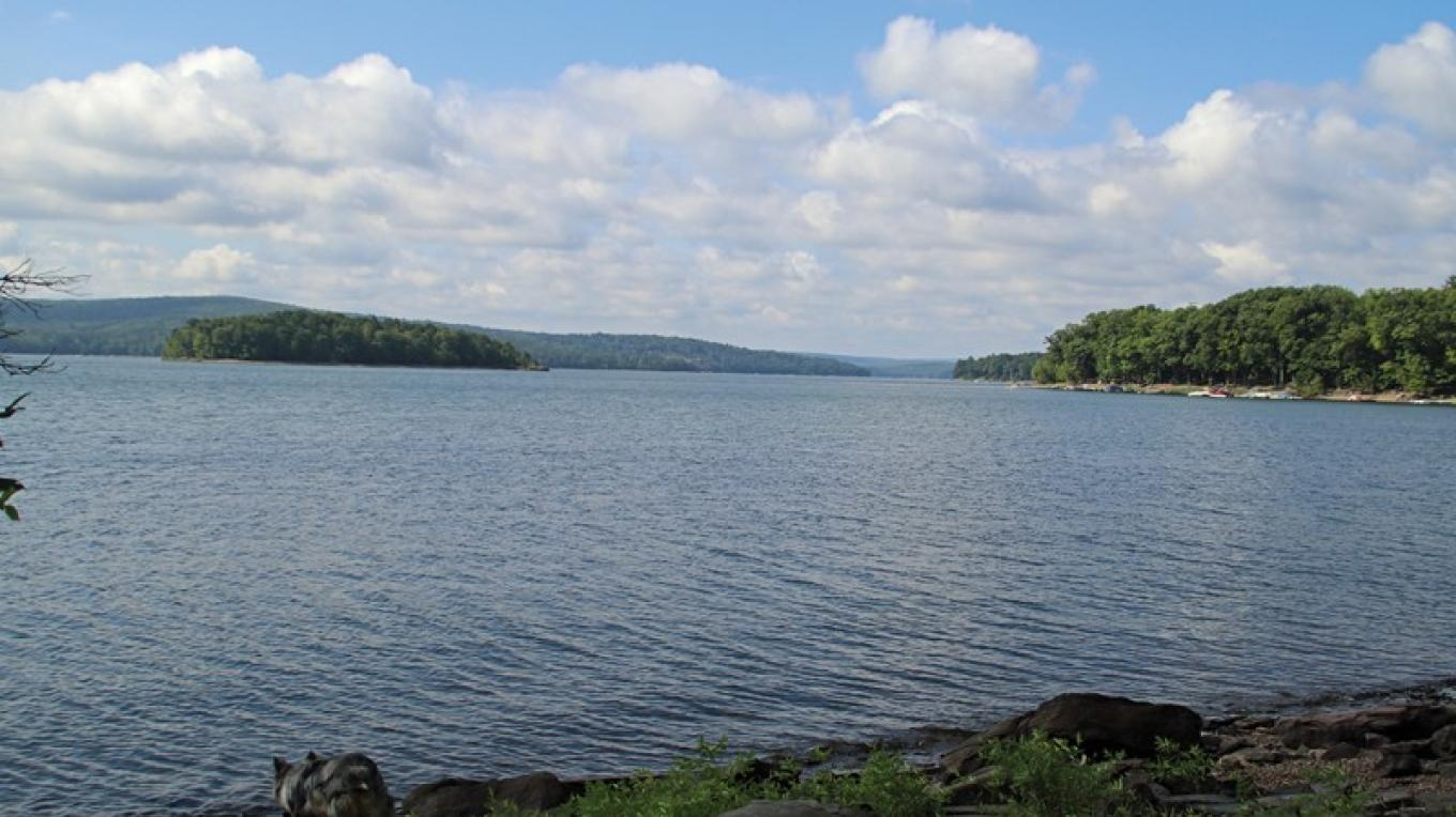 The blue trail of Shuman Point Natural Area follows the shore of Lake Wallenpaupack. – Nancy J. Hopping
