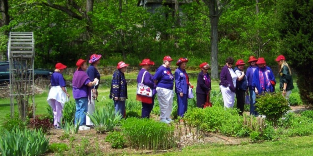 Red Hat Ladies Visit the KVSP Butterfly Garden – Photograph by: Lynn K. Groves