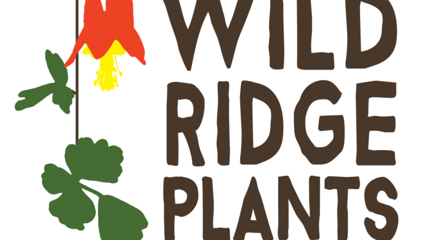 Wild Ridge Plants is a native plant nursery located in Pohatcong, NJ.