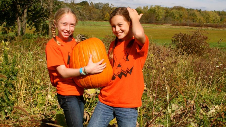 Great Pumpkin Festival! – Stacey Sipila