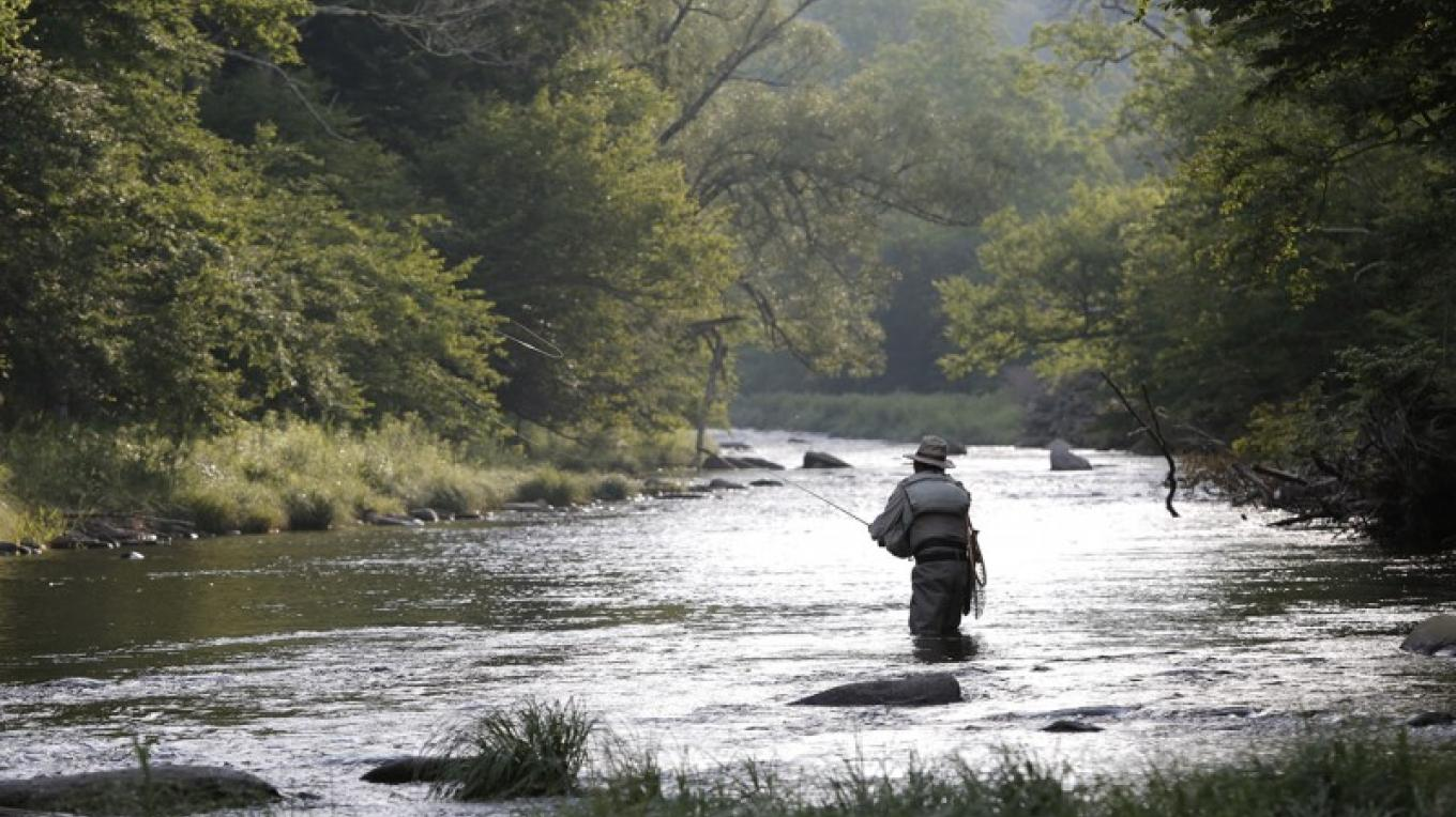 One mile of private Beaverkill River – Walter Hodges