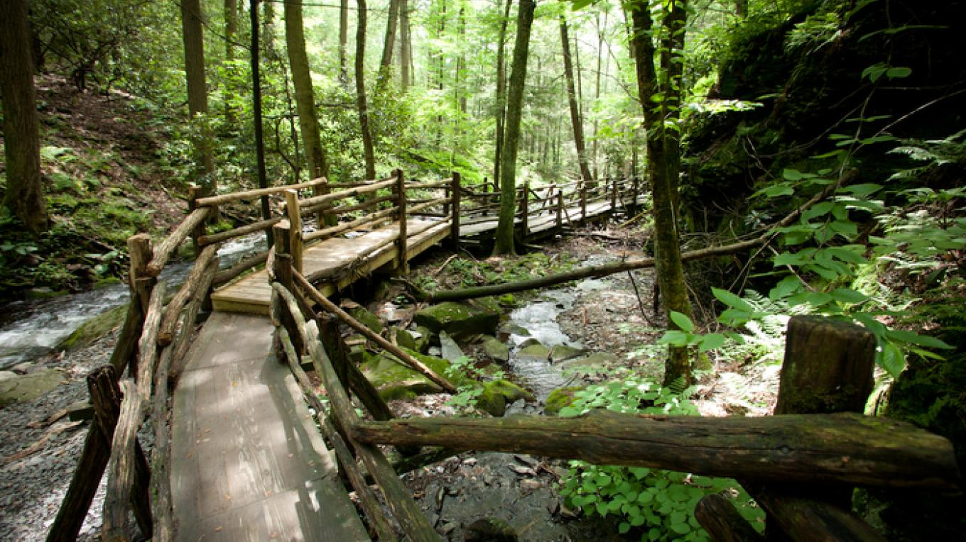 Pathway above Main Falls. – David W. Coulter