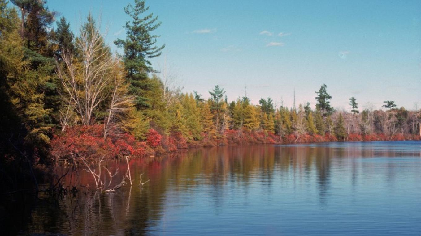 Lake Lacawac in fall