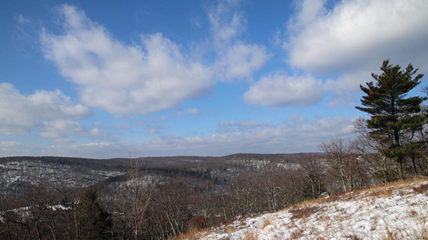 The view from atop Mount Wismer. – Nancy J. Hopping