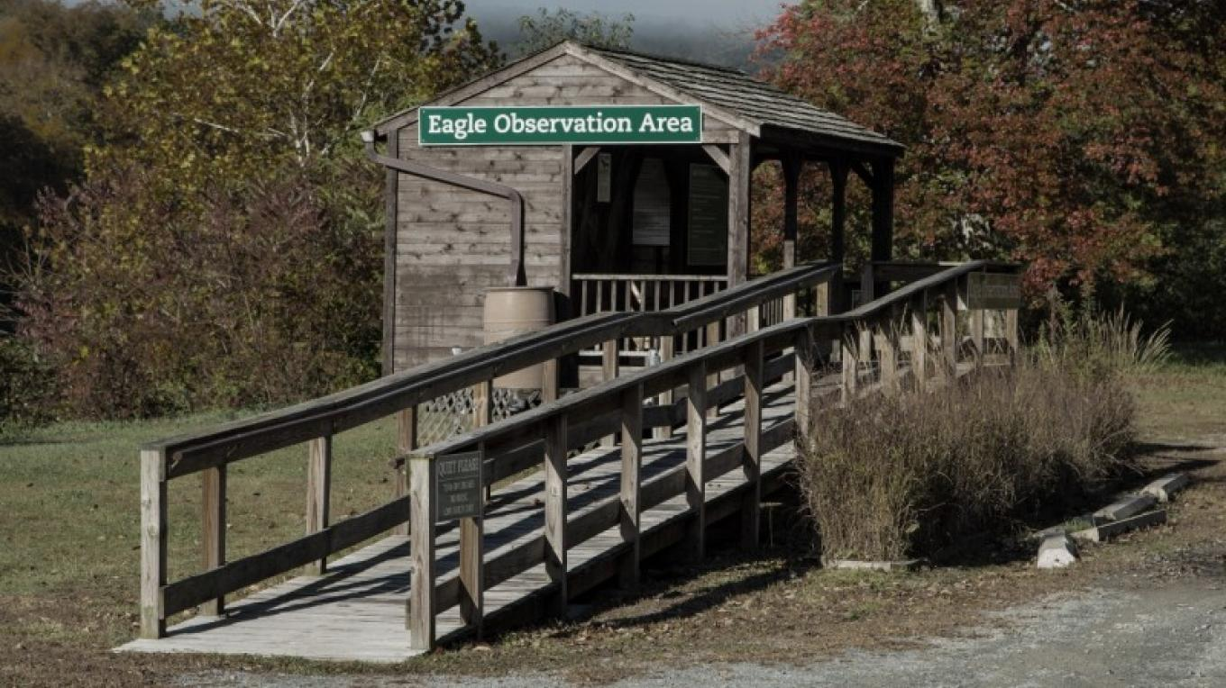 One of the Delaware Highlands Conservancy's Eagle Observation Areas near Barryville, NY. – Aldo Troiani