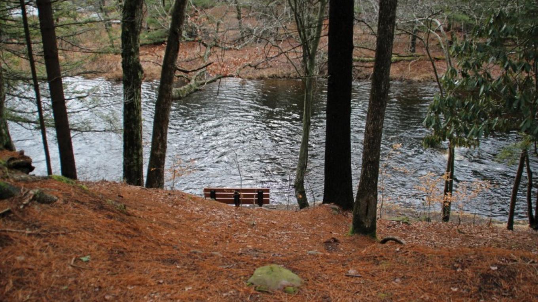 Take a higher walking path for a longer view of Tobyhanna Creek. – Nancy J. Hopping