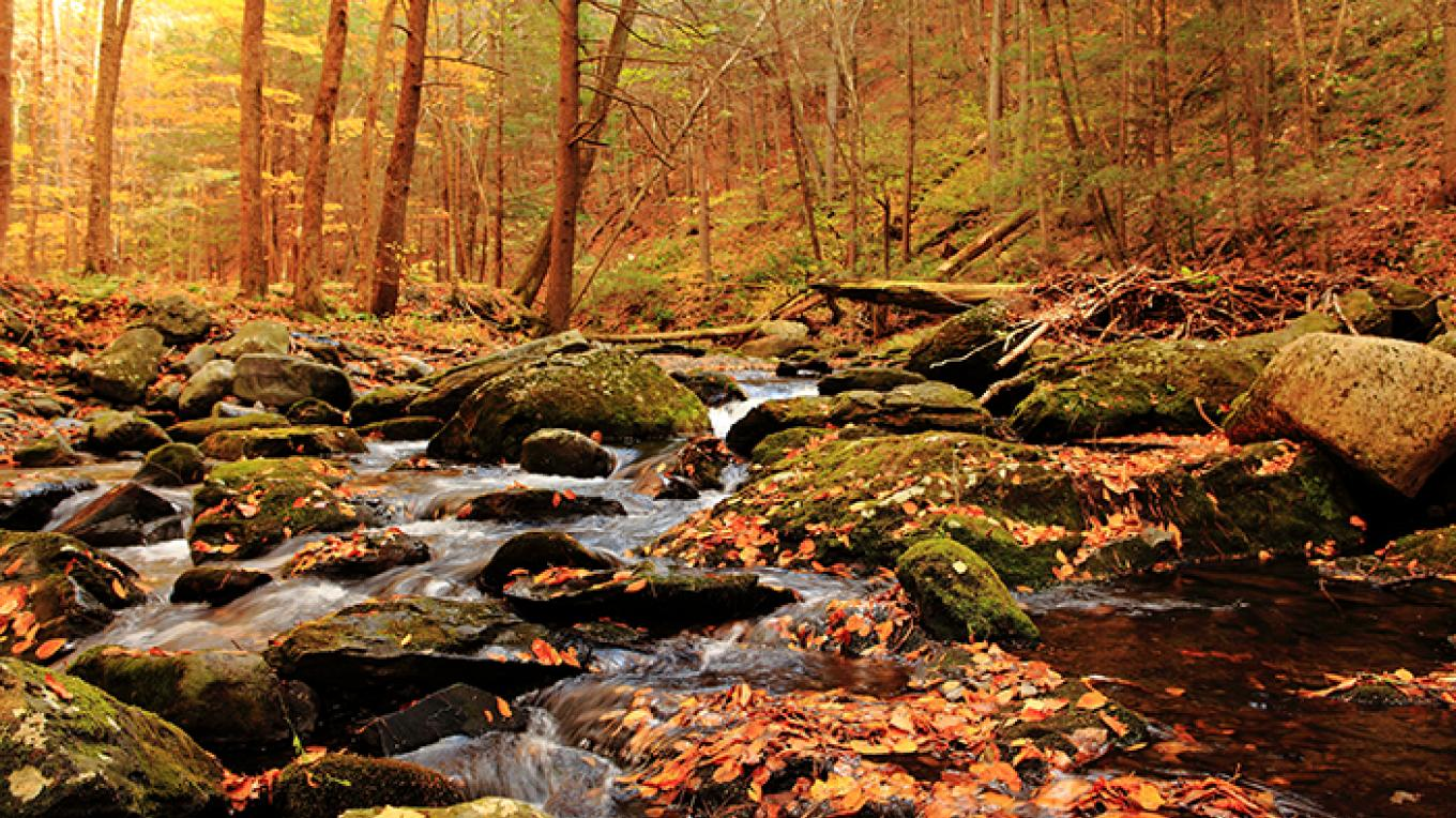 A fall hike along Tom's Creek in Pennsylvania. – National Park Service