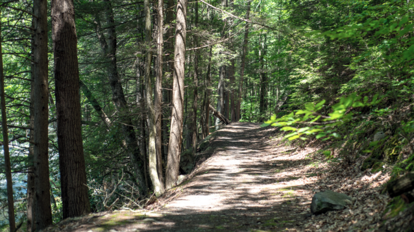 Mongaup River Trail – Photograph by: National Park Service