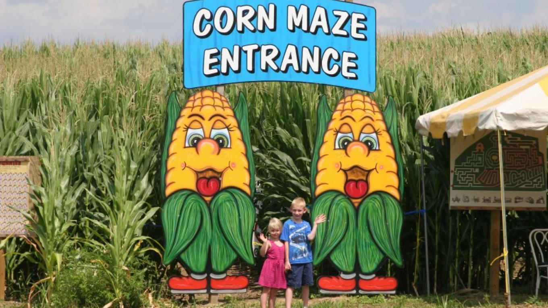 Corn Maze entrance! – Stacey Sipila