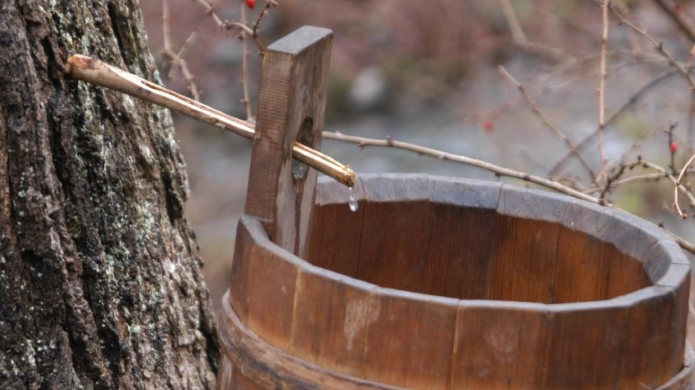 Maple sugaring and ice harvesting are activities our members enjoy in the winter time. – Debbie DiPasquale