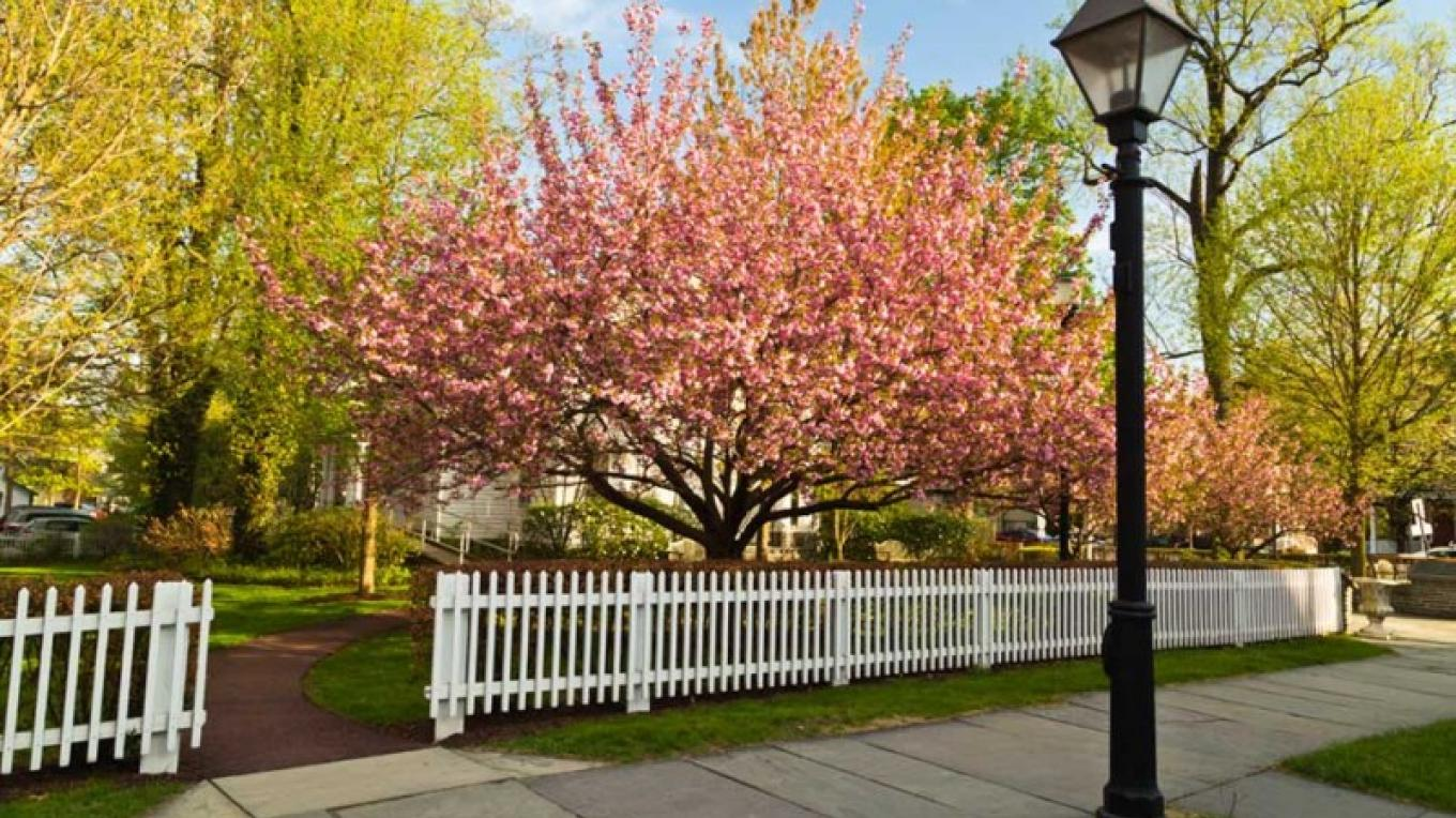 Streetscape of Milford in May – Jeff Sidle