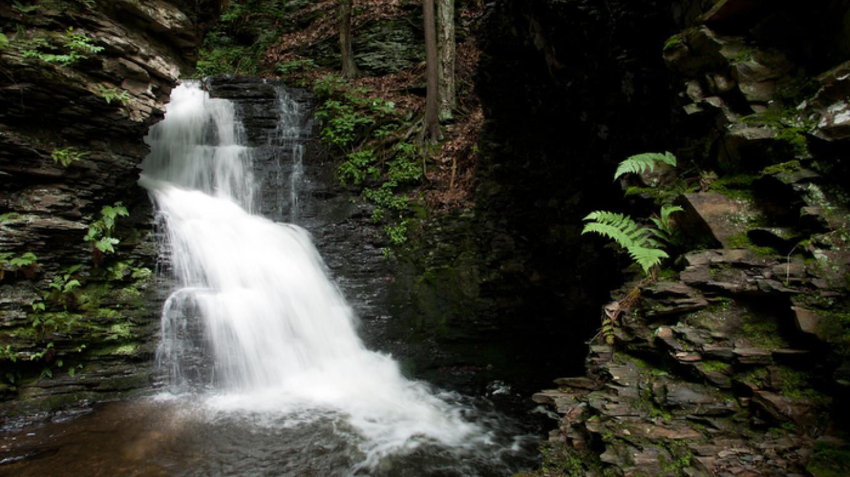 Bridal Veil Falls. – David W. Coulter
