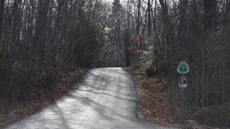 The road to the Mt. Minsi Trailhead – Rachele Cooper