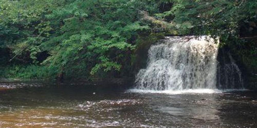 Little Falls on the Willowemoc – Bill Kocher