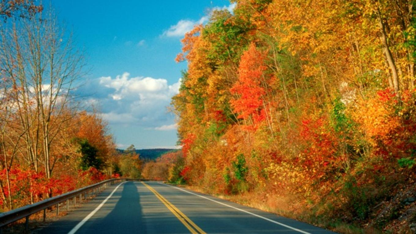 "A 2015 Reader's Choice contest by USA TODAY voted the Upper Delaware Scenic Byway as the #2 ""Best Autumn Scenic Drive"" in the entire country and #1 in the northeast. – David B. Soete"
