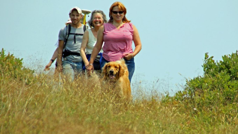 Hiking down the trail. – Nancy J. Hopping