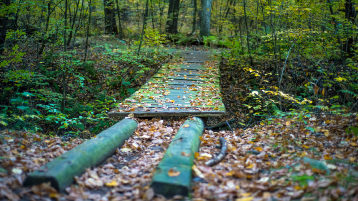 Tusten Mountain Trail – - National Park Service