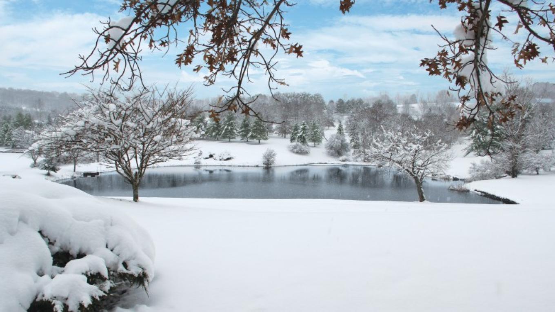Winter Wonderland – Michael Barzda