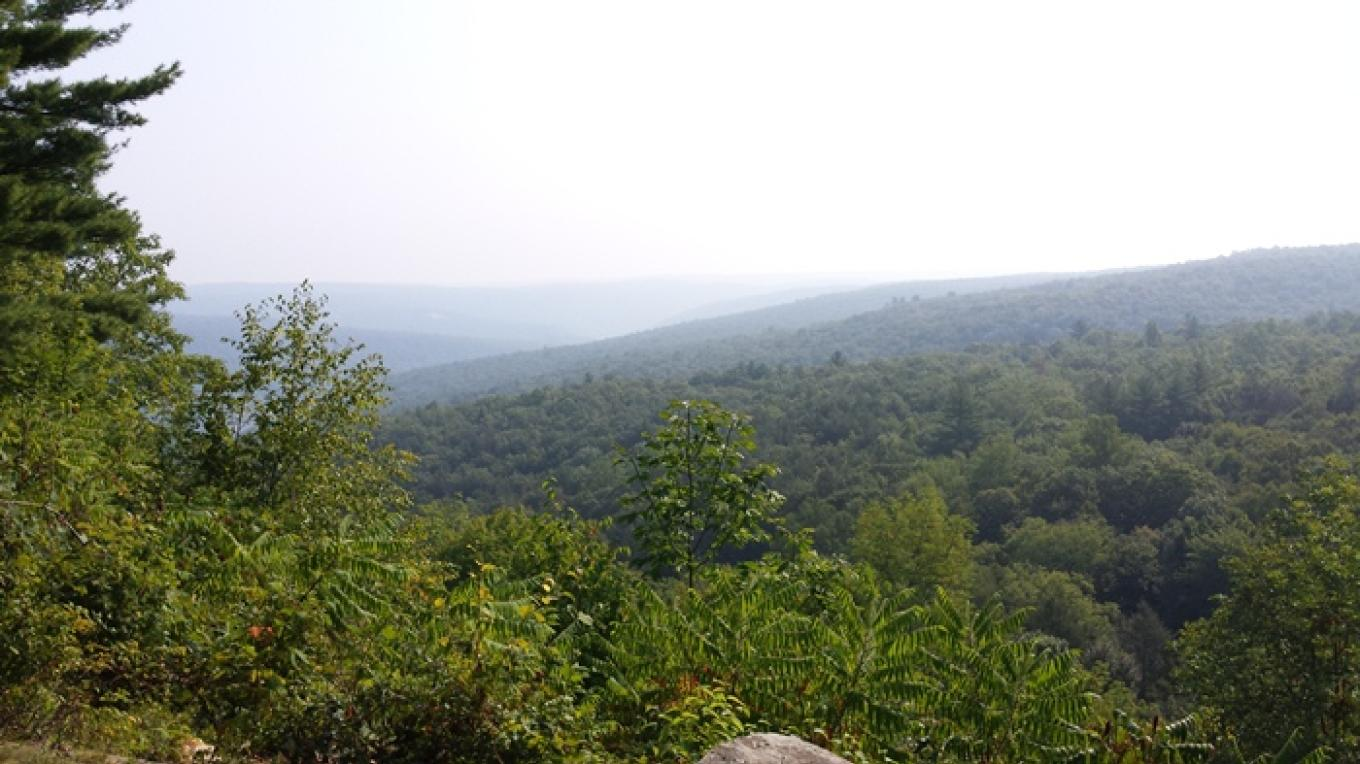 Stairway Lake natural area looking out towards New Jersey – Kimberly Linette
