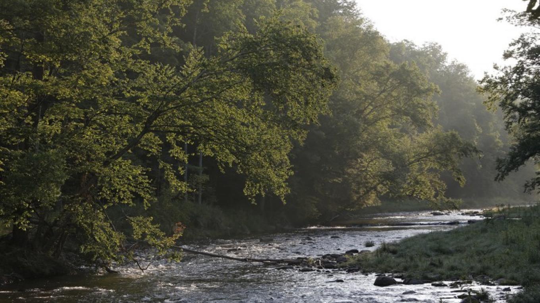 Beaverkill River – Walter Hodges