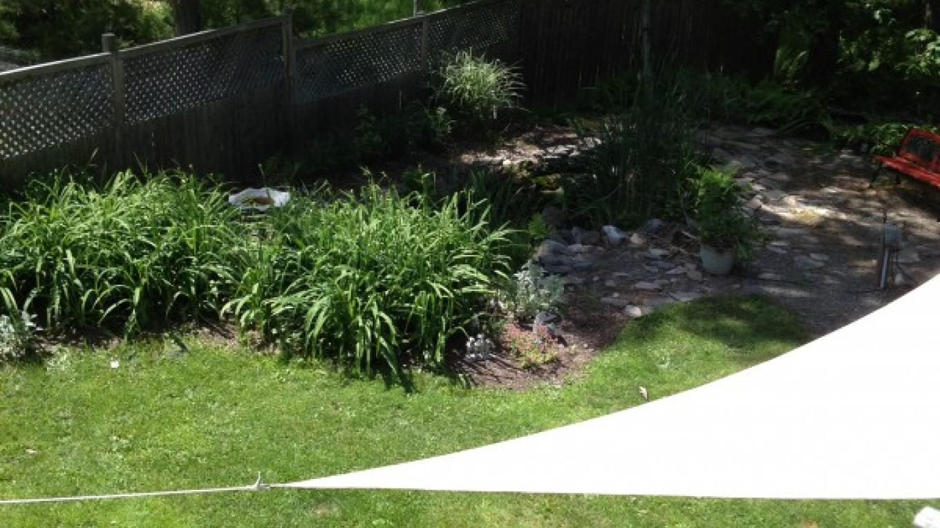 Inviting gardens of early summer providing lots of shady spots to relax in – D. Davies