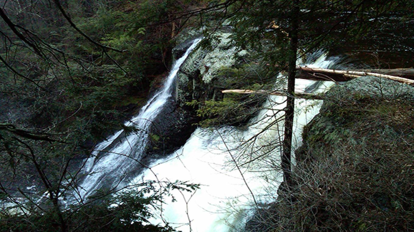 Enjoy cascading waterfalls, such as Raymondskill Falls pictured here. – National Park Service